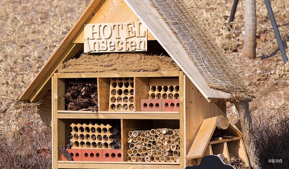 벌레도 즐기는 문화생활, 벌레호텔
